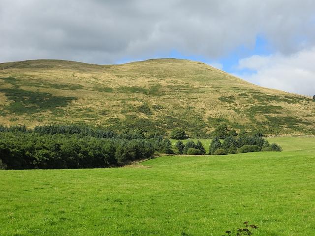 Field near Middlehall