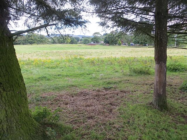 Monarch Deer Park