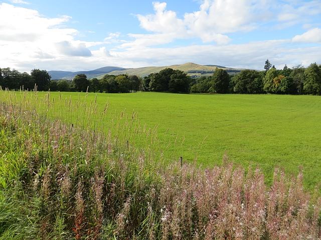 Grassland beside the Devon