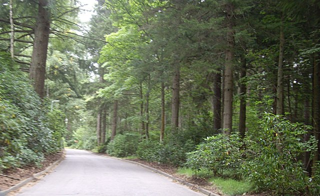 Driveway to Glen O'Dee hospital