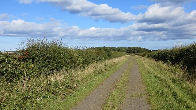 Farm road near Ancroft