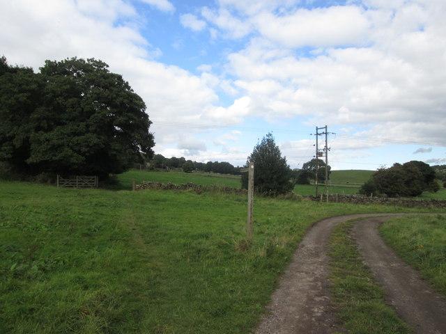 Footpath near Lawn Cottage