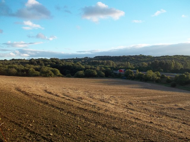 Ploughed Field viewed from Miller Hill