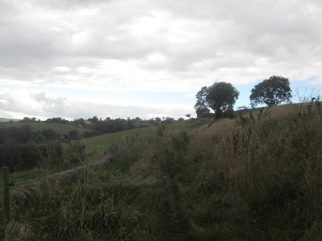 Footpath towards Hazelwood Hall Farm