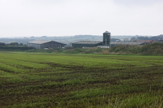 Grassland after slurry application, Treddiog-fach