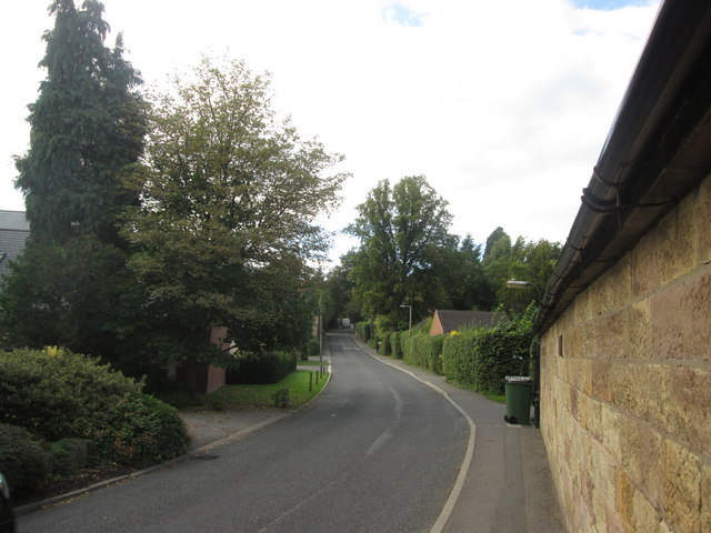 Hazelwood Road towards Spring Hill