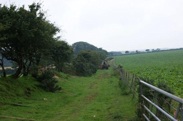 Field boundary work near Trehale Farm
