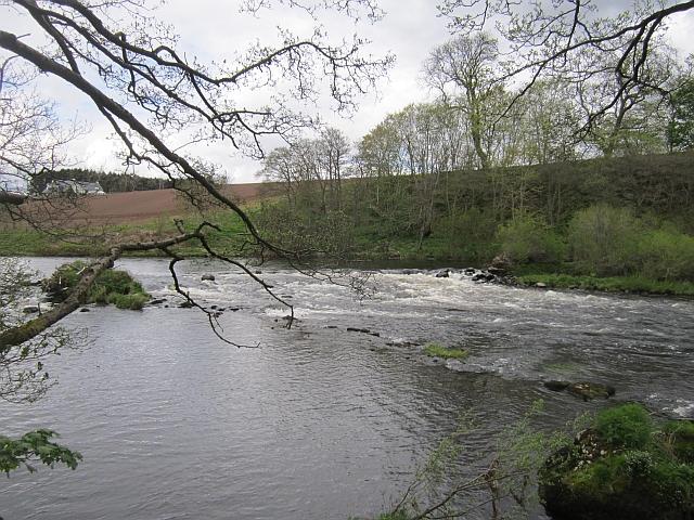 Weir, Mill of Earn
