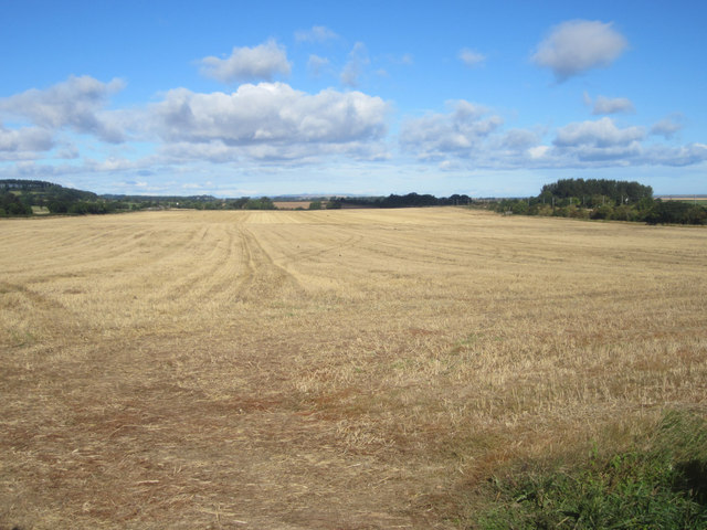 Arable field near Cragmill
