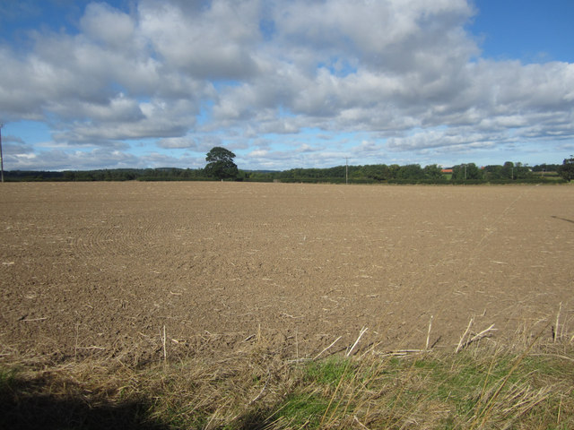 Freshly tilled arable field west of Easington Demesne