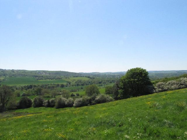 Lush greenery in the Tyne Valley below Ovington