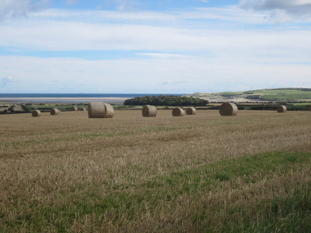 Arable land at Easington