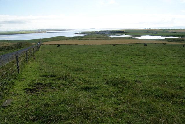 Cattle-grazing land below Holm war memorial