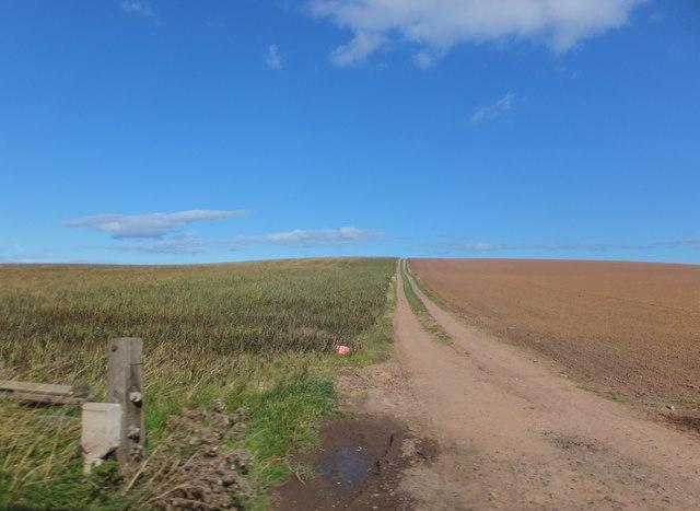 Track into farmland