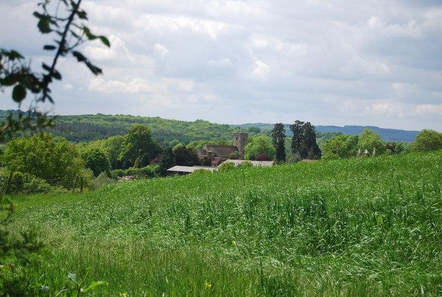 View to Salehurst