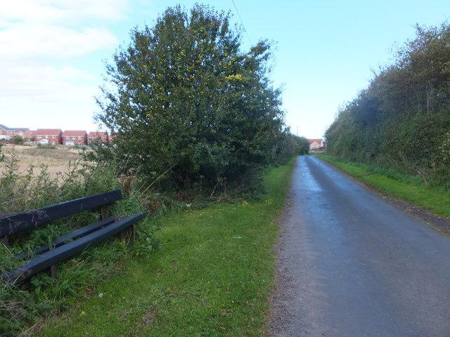 Minor road to Eyemouth