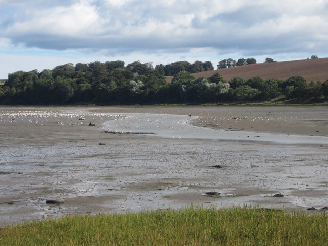 The Waren Burn flowing into Budle Bay