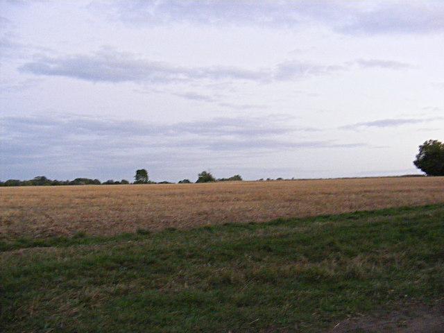 Field off Heywood Road