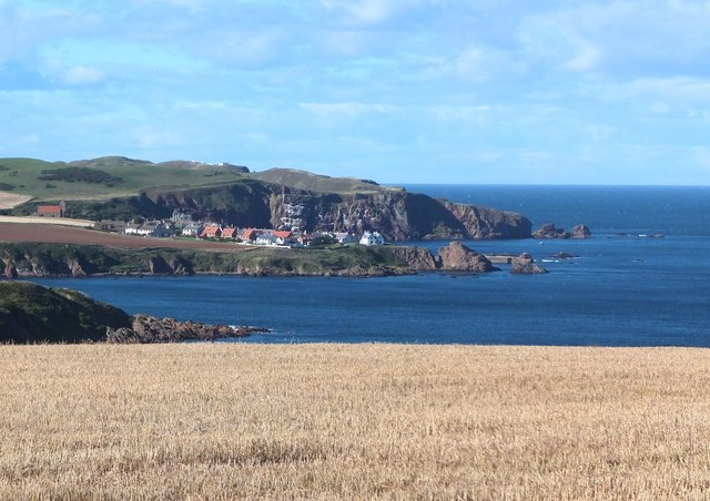St Abbs from Hallydown