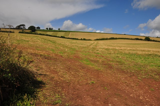 Mid Devon : Countryside Scene