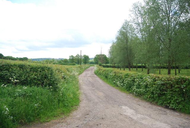 Moat Farm track
