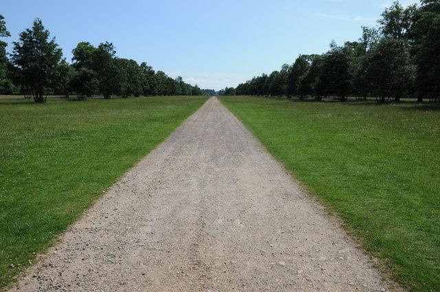 Avenue in Belton Park