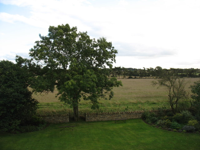 View south from Downthorns Farm