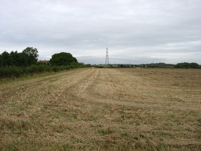 Farmland at Down Farm