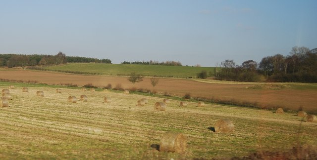 Hay bales near Rugeley