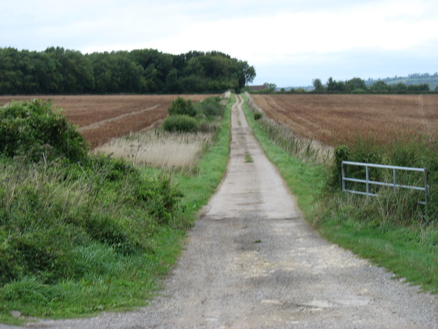 The bridleway to Hillesley