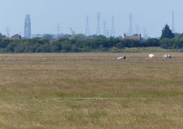 View across Frampton Marsh towards Boston