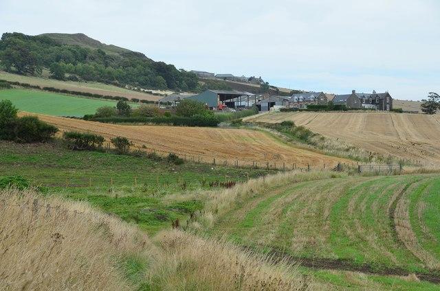 Farmland below Largo Law