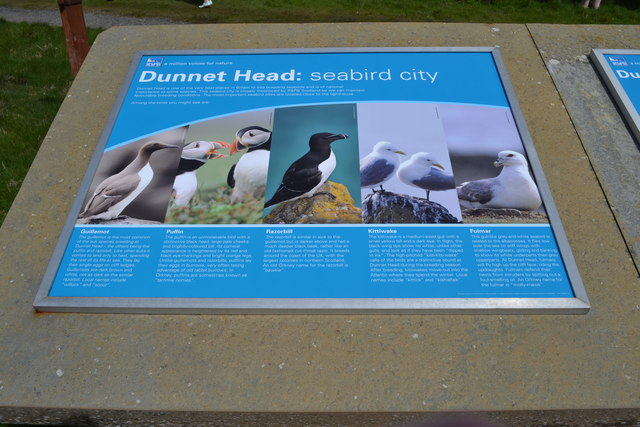 RSPB Dunnet Head Information Board, Dunnet Head Peninsula, Caithness