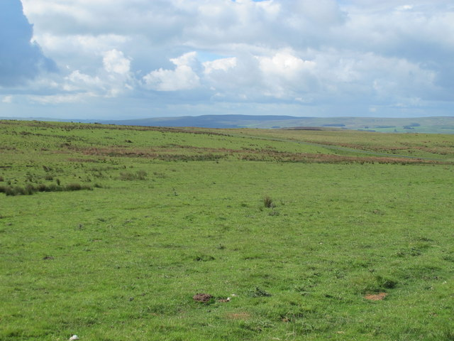 Moorland south of Fiddlers Wood