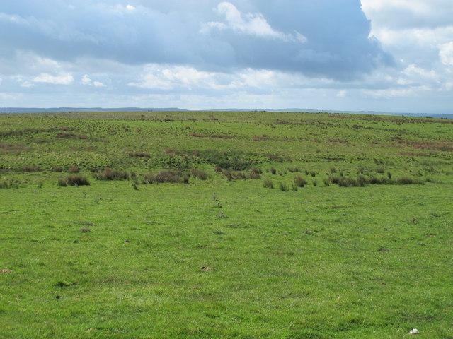 Moorland west of Cooper Stones