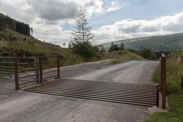 Cattle Grid near Blaen-y-glyn