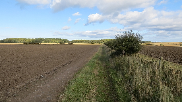 Path near Unthank