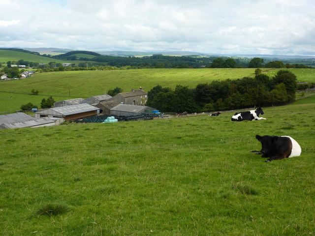 Scaleber, a farm near Gargrave