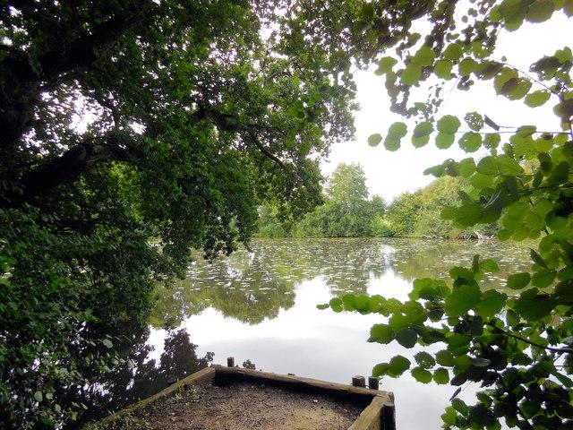 Mill Pond, Bolney