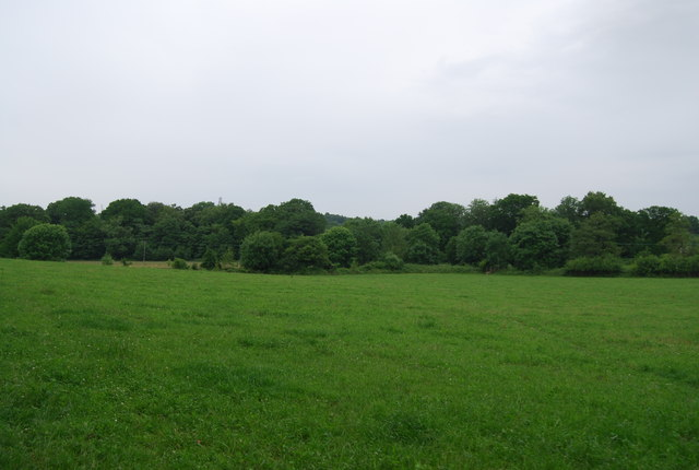 Field in the Medway Valley