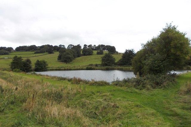 Square Wood Reservoir