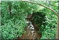 TQ4135 : River Medway by N Chadwick