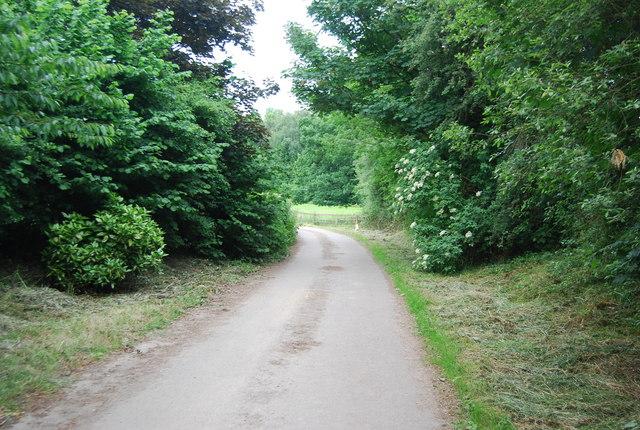 Footpath at Brambletye