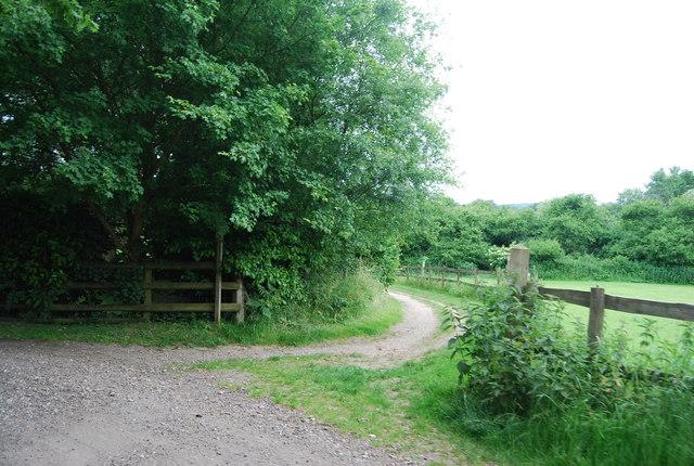 Bridleway junction