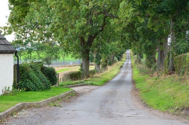Minor road at Newburn