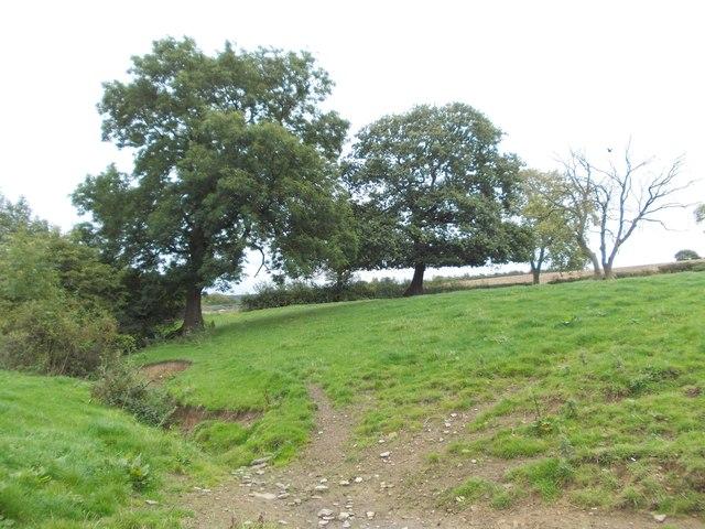 Thorpe Dike and farmland south of Skelmanthorpe