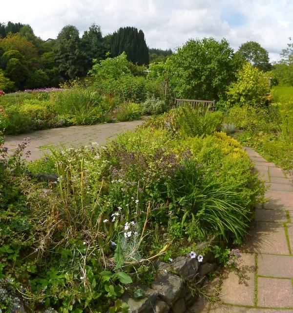 The Smelly Garden
