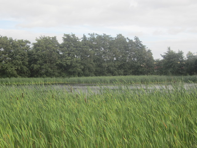Wetlands at Helix Park, Falkirk