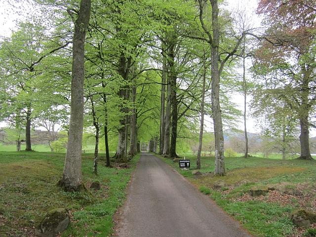 Driveway, Drummond Castle