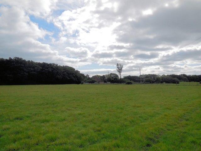 Field near Green Barn